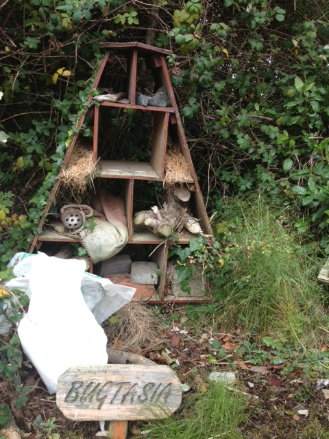 Bugtasia Bug Hotel at St Anthony's Primary School
